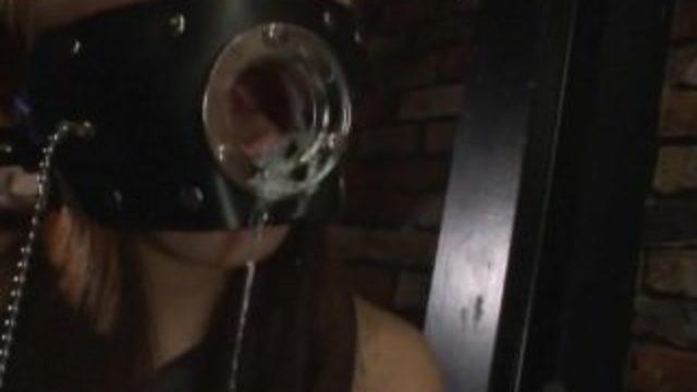 葵紫穂 悲嘆の肉弾女警護官3 女豹SP